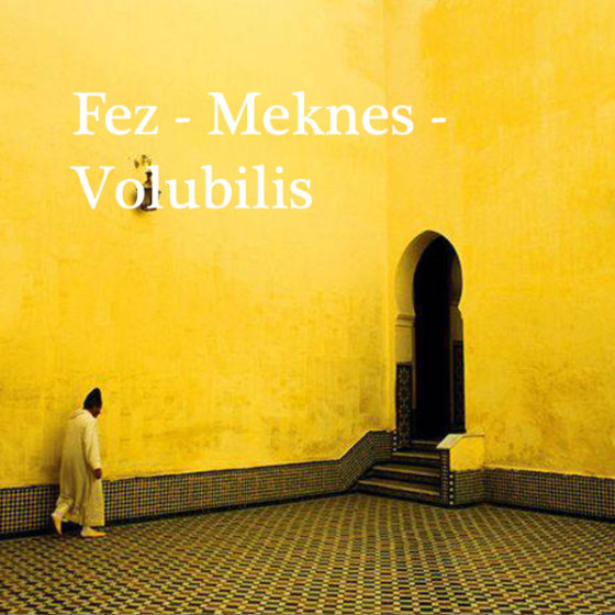 Fez a Meknès y Volúbilis