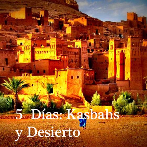 5 Días: Kasbahs y Desierto