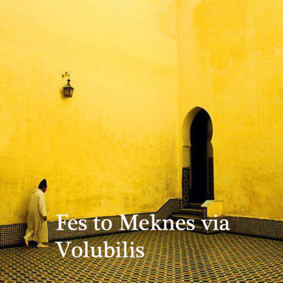 Fes to Meknès via Volubilis