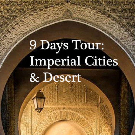 9 Days Tour: Imperial Cities & Desert
