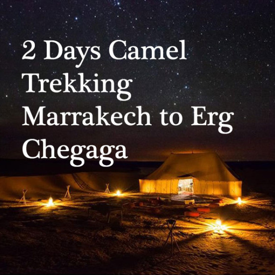 2 Days Camel Trekking: Marrakesh to Erg Chegaga