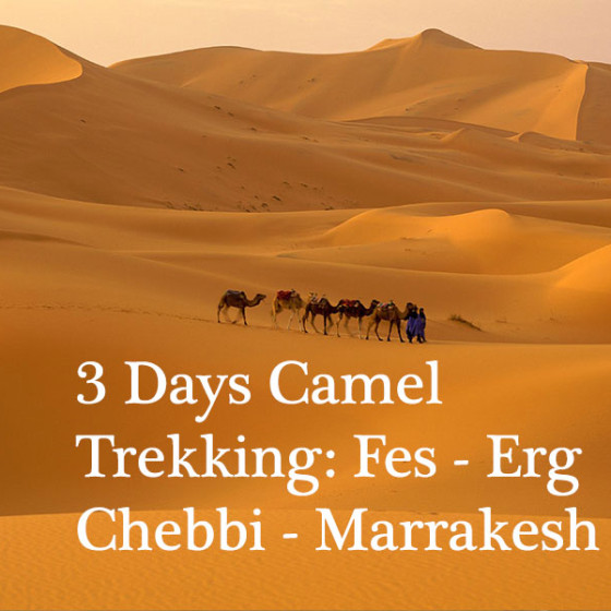 3 Days Camel Trekking: Fes - Erg Chebbi - Marrakesh