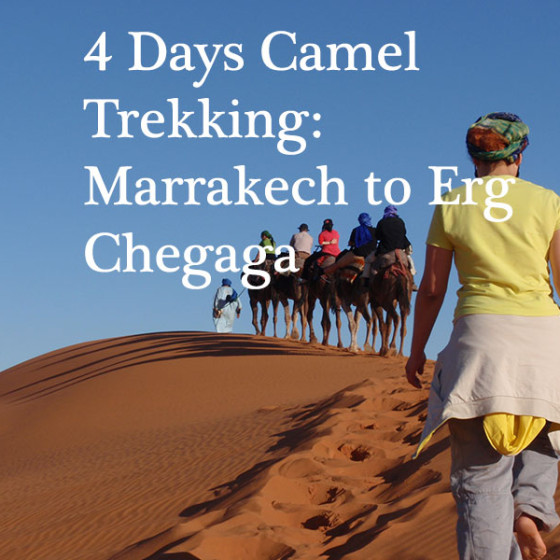 4 Days Camel Trekking: Marrakech to Erg Chegaga