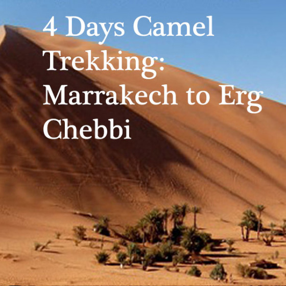 4 Days Camel Trekking: Marrakech to Erg Chebbi